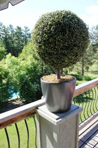 'Boxwood Topiary' by Artistic Artificial Trees