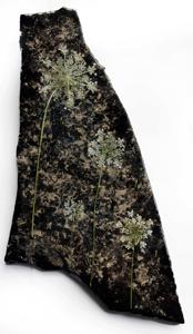 """'Lady in Lace """"Stone Art""""' by Schutten Karyn"""